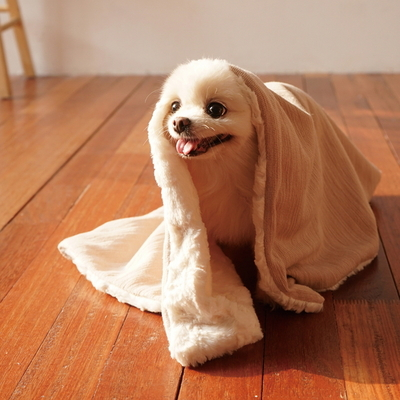 edenbliss 프렌들리 블랭킷 골드베이지-강아지 고양이 담요 이불