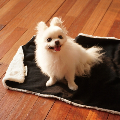 edenbliss 프렌들리 블랭킷 딥블랙-강아지 고양이 담요 이불