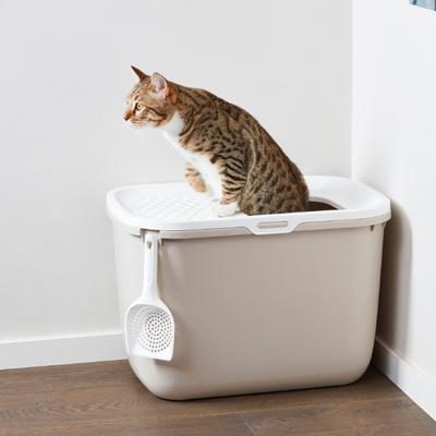 사빅 홉인 탑엔트리 고양이화장실 베이지