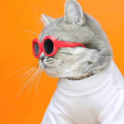 고양이선글라스 이온펫 냥글라스