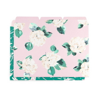 get it sorted file folder set lady of leisure marb