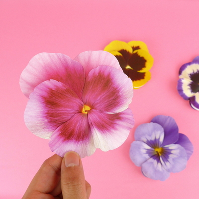 팬지 카드 Pansy Flower Card