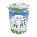 고양이정원 캣그라스 재배세트 (컵)