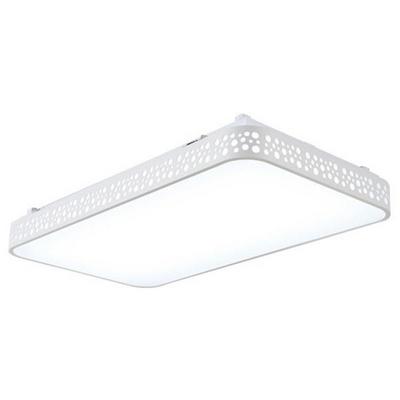 테리우스 화이트 LED60W 직사각 방등