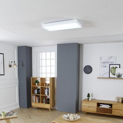 나비 직사각 LED60W 방등