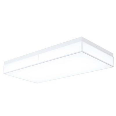 루나솔 직사각 LED60W 방등