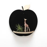 자작나무 애플 선반