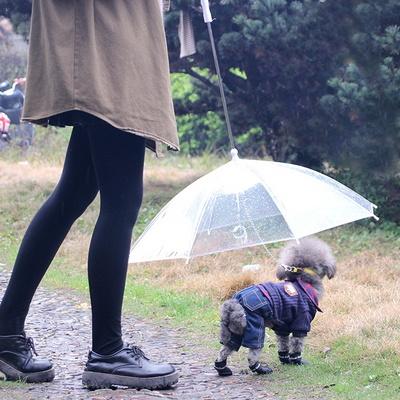 갓샵 강아지 애견 우산 산책 용품 우비 반려견 개우산