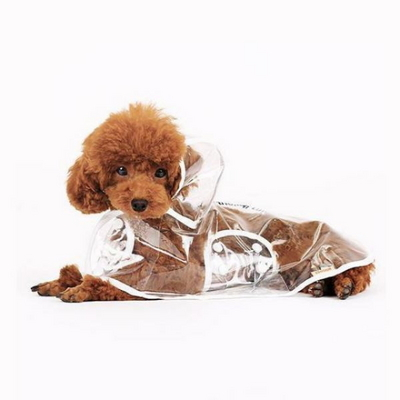 애견 강아지 투명 레인코트 비옷 우비 우의