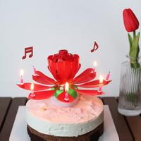 멜로디 연꽃초 생일축하 폭탄초 회전초 인싸 촛불 초