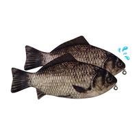 생선필통 붕어필통