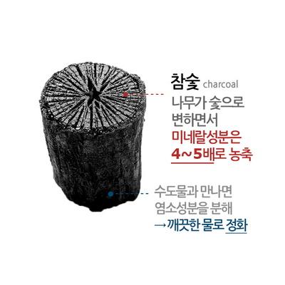 대용량 참숯 클렌징폼 500ml