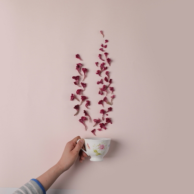 국내산 맨드라미 꽃차