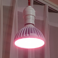 LED식물전구 식물생장용 광합성전구 LED GROW LAMP