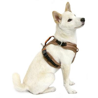 견고한 구비 파이오니어 H형 강아지 하네스 S/M