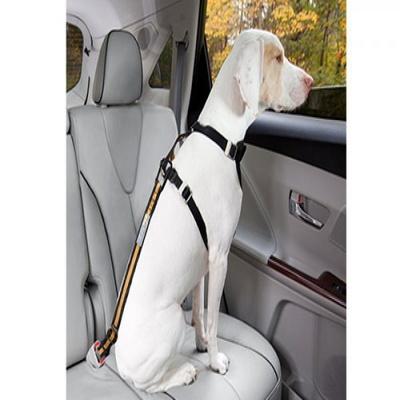 커고 자동차 강아지 안전벨트 다이렉트 테더 시트벨트