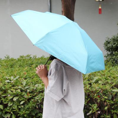 아이디어 특이한 알약 5단우산 초미니