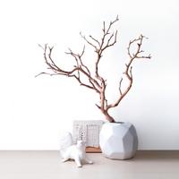 영원한 작품-데코용 천연나뭇가지