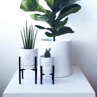 미니월드 -H형 미니스탠드 2+식물화분2세트