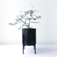 Poem 마오리 코로키아 Metal Pot + 화분스탠드