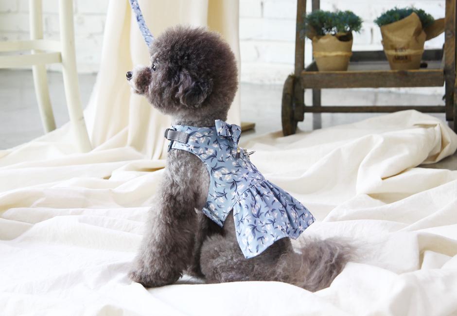 토토앤로이 강아지 하네스 히아신스 드레스 - 토토앤로이, 38,000원, 이동장/리드줄/야외용품, 목줄/가슴줄