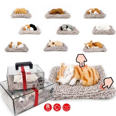 리얼펫 소리나는 제습인형 강아지 고양이 모형 탈취제 - 선물용박스
