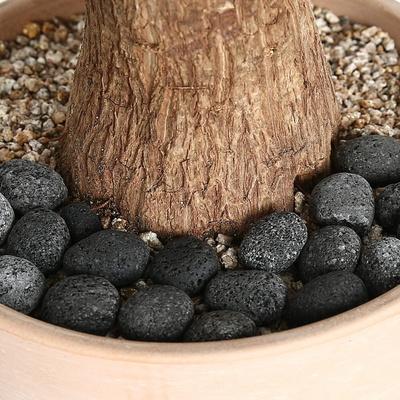 [데팡스] 라바에그 블랙 화분 원예 조경 어항자갈 장식돌 1kg