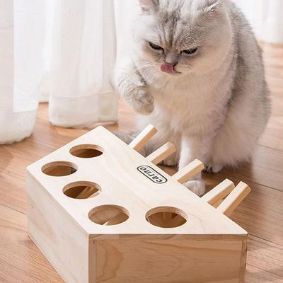 탁펫 고양이 두더지게임 5구