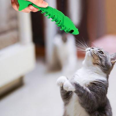 탁펫 고양이 치아관리 실리콘 새우