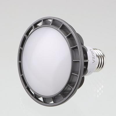 PAR30 LED 비츠온 15W 확산형 주광색 6500K