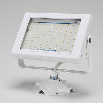 LED 사각 투광기 화이트 30W 노출형 주광색 SS