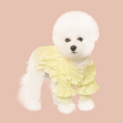 하이넥 러플 셔츠_yellow