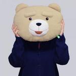 19곰테드 곰인형 얼굴 쿠션 40CM