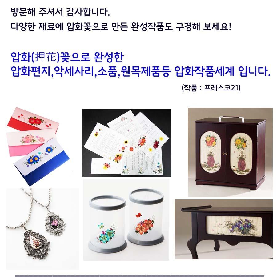 압화종합팩(K102) - 프레스코21, 4,000원, 압화 공예, 압화 공예 재료