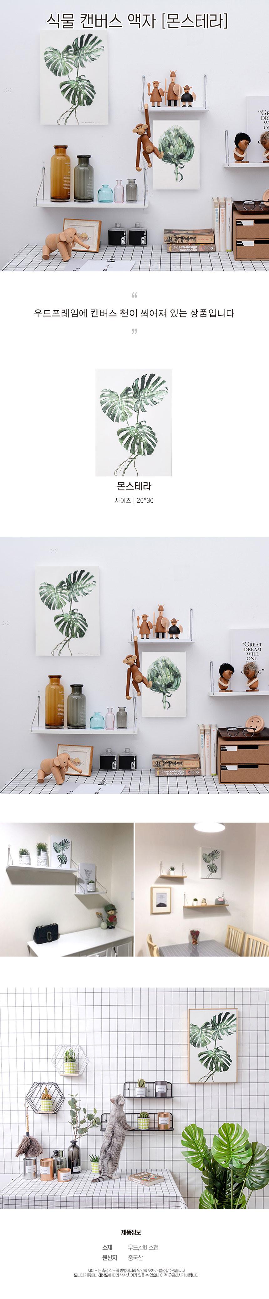 식물 캔버스 액자 몬스테라 - 사인모아, 14,000원, 홈갤러리, 캔버스아트