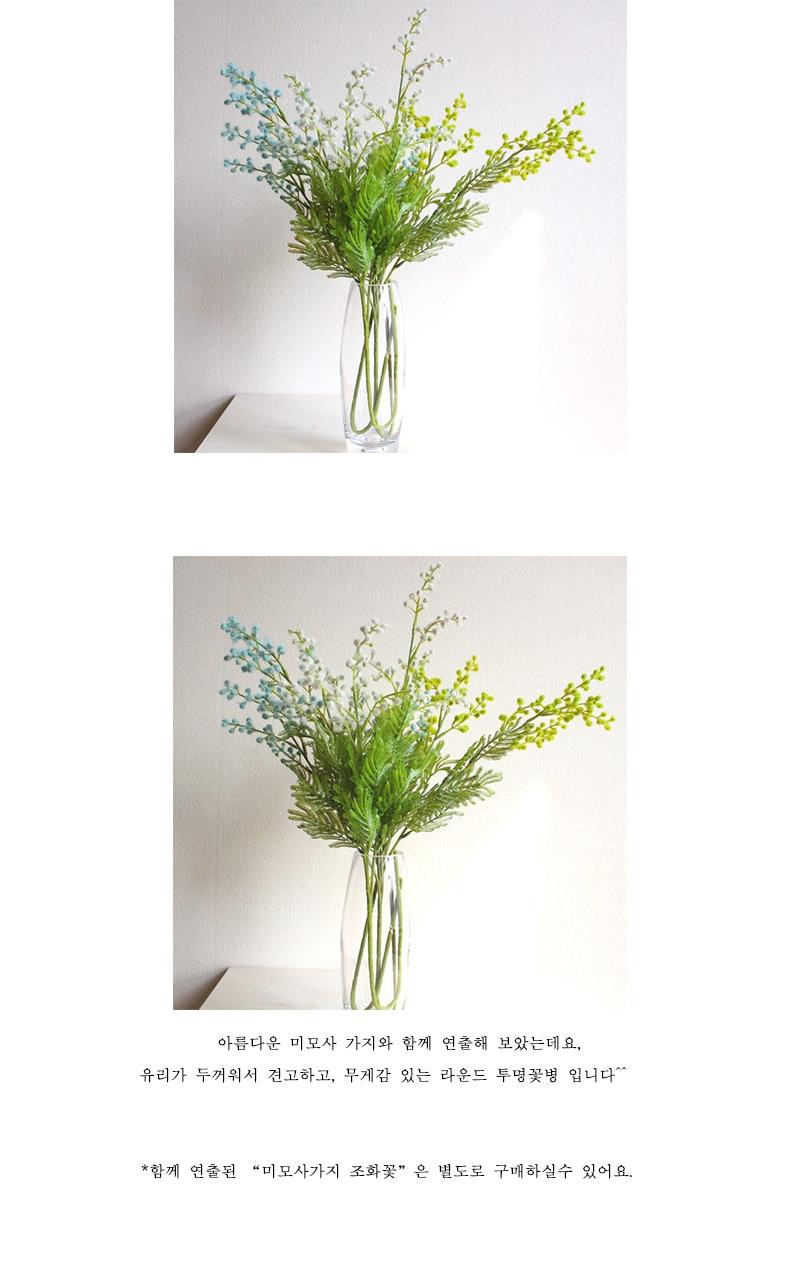 라운드 투명 유리꽃병 - 베아르시, 12,500원, 화병/수반, 유리화병