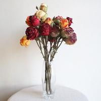 드라이플라워 스타일 자나장미 조화꽃장식(5color)