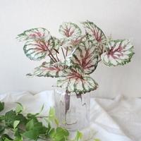 생화같은 베고니아 조화잎장식 (2color)