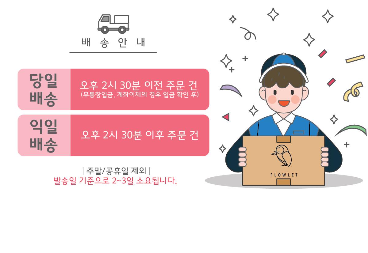 어린이화장품 스티커 마스크팩_엘리_10매 - 플로릿, 40,000원, 스킨케어, 스킨/로션/오일