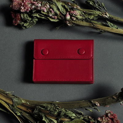Accordion card wallet - Red