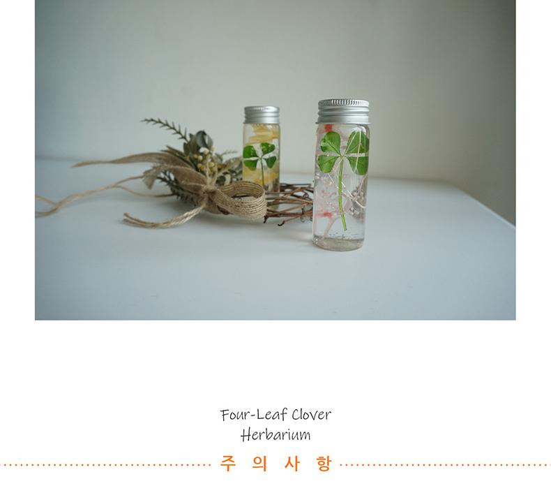 네잎클로버 플라워 하바리움 - 그린시트러스, 4,200원, 조화, 프리저브드