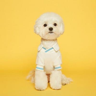 플로트 강아지옷 V넥 피케 셔츠 - 화이트