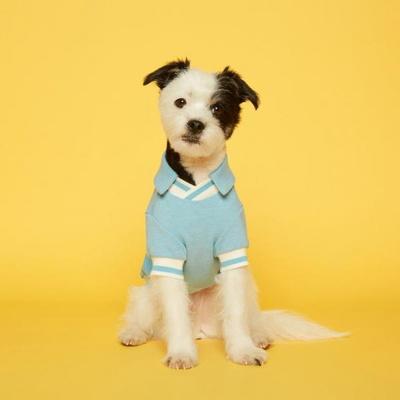 플로트 강아지옷 V넥 피케 셔츠 - 스카이블루