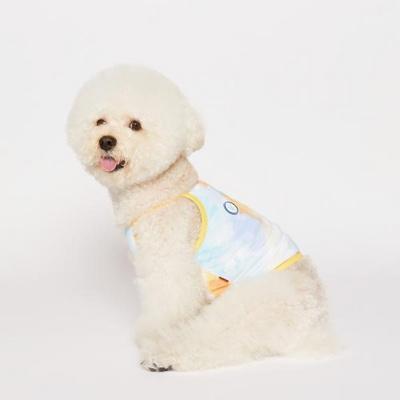 강아지옷 썸머레인보우 크롭 나시