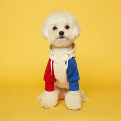 플로트 스탠다드 후드 레드블루 강아지옷