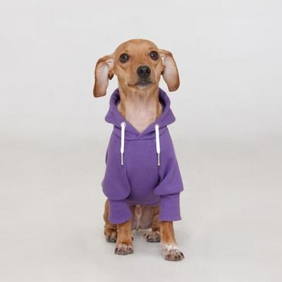 플로트 스탠다드 후드 퍼플 강아지옷