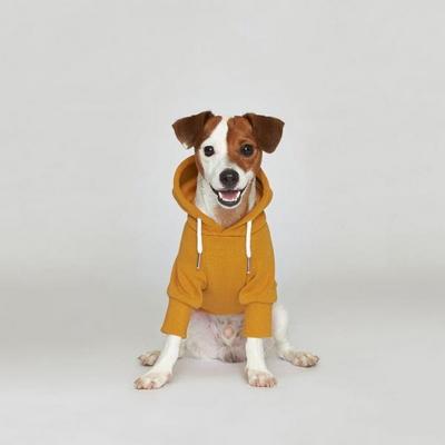 플로트 스탠다드 후드 옐로우 강아지옷