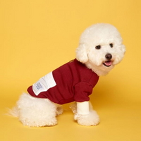 부드럽고 따뜻한 댕댕이 가을 옷