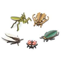 교과서에 나오는 곤충 만들기 5종 set