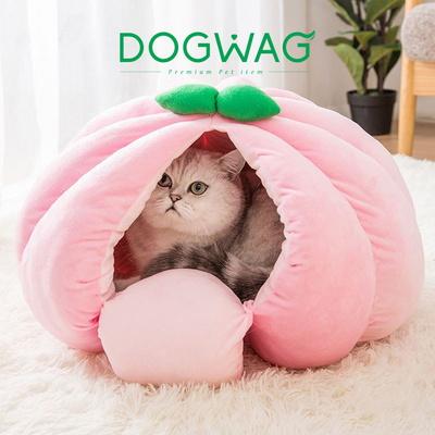 과일 숨숨집 고양이 하우스 복숭아 사과 호박